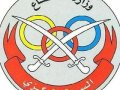 جمعية وزارة الدفاع الإستهلاكية
